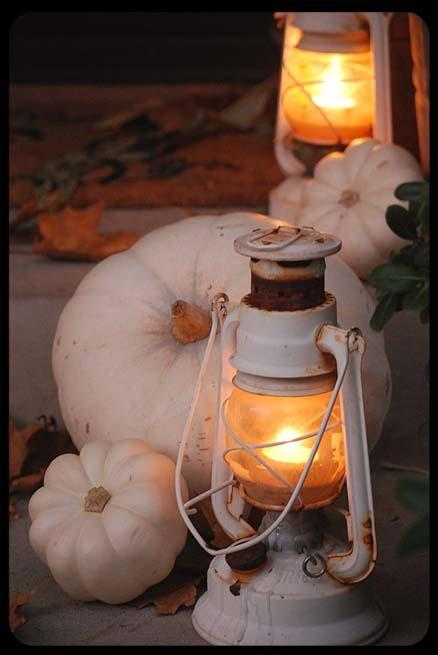 Fall in love with fall / white pumpkins