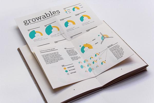 Fermes fenêtre: Information Design livre sur