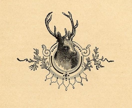 framed deer head — Designspiration