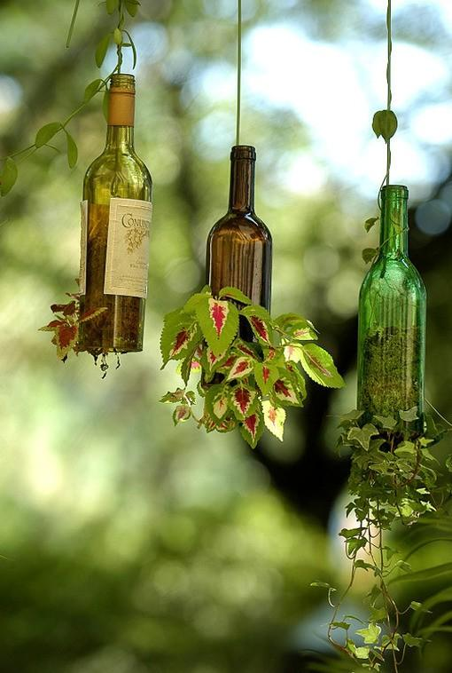 Garden / love the coleus