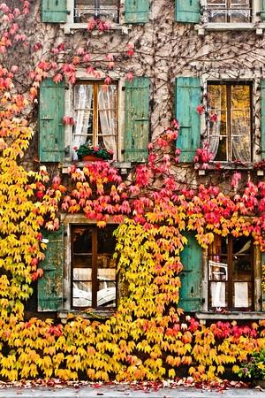 home inspiration / swiss autumn