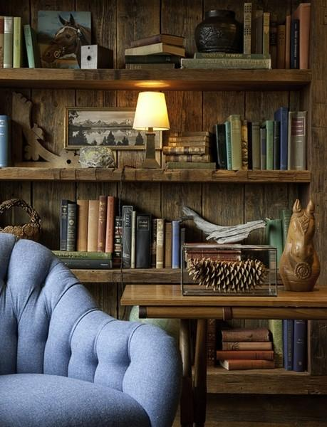 INTERIORS / rustic bookshelves & baby blue armchair