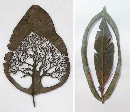 leafs / leaf art