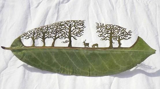 leafs / Leaf