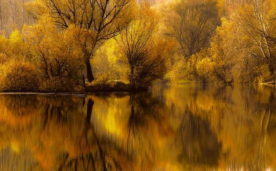 photography / romantic fall