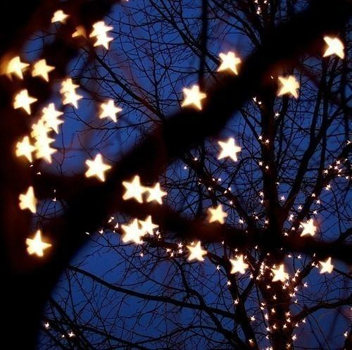 photography / Stars...Stars...Stars...