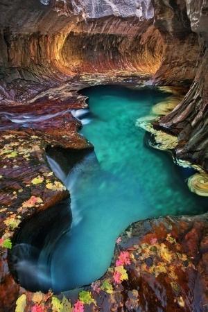 Wanderlust / turquoise